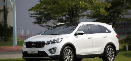 2015-kia-sorento-live-and-wild-pictures (43)