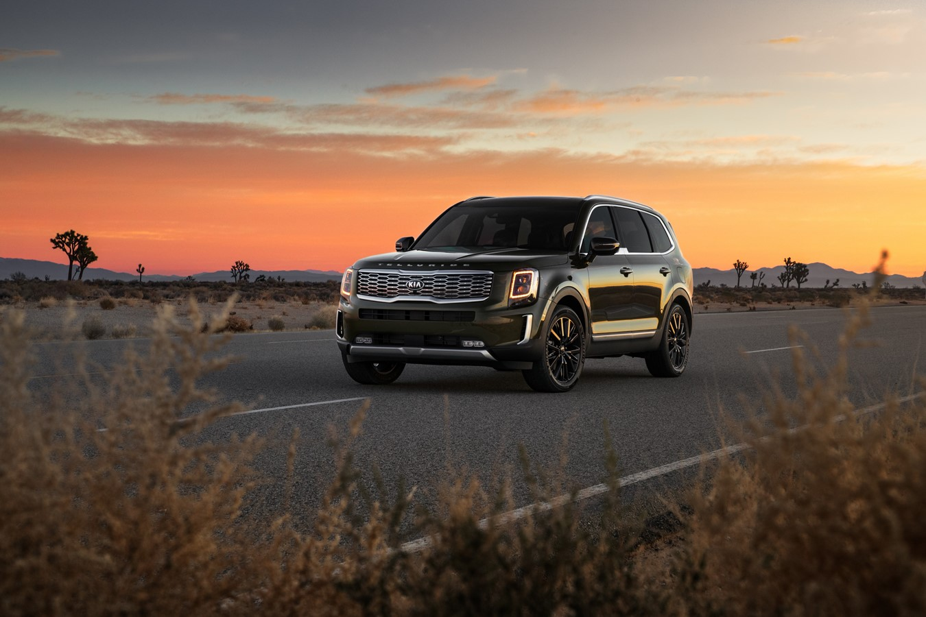 2020 Kia Telluride Buyer's Guide
